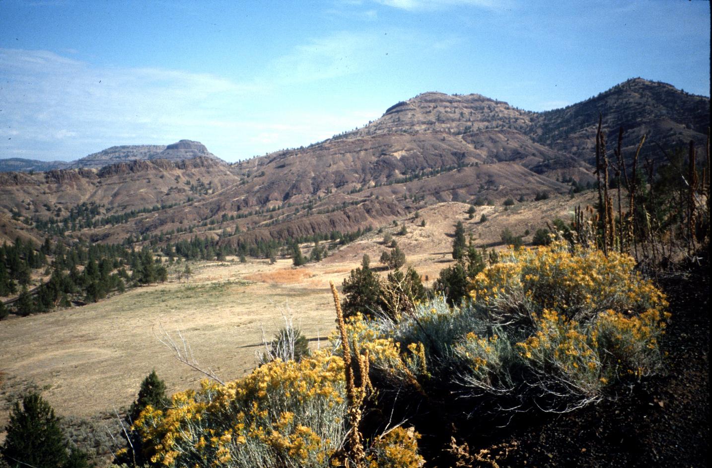 Oregon Picture Tour